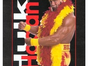 Hollywood Hulk Hogan Book Review