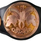 wwe-tag-team-titles