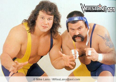 wwf-steiner-brothers