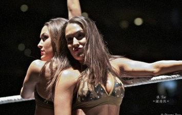 WWE: Divas match to be added to the WWE Hell in a Cell PPV?