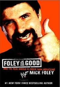 Foley Is Good Book