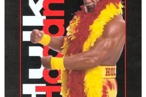 Hollywood Hulk Hogan Book Cover 0