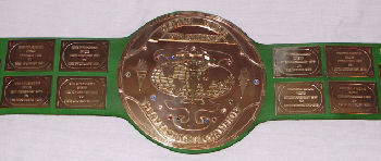 Big Green WWF Title Belt