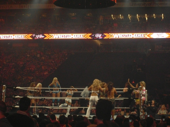 Wwe Wrestlemania 26 4