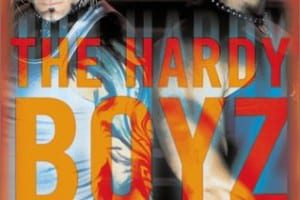 Hardy Boyz Exist To Inspire Book Cover