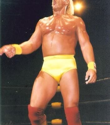 Wwf Hulk Hogan