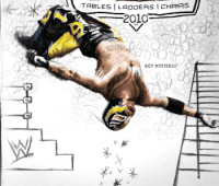 wwe-tlc-2010-dvd