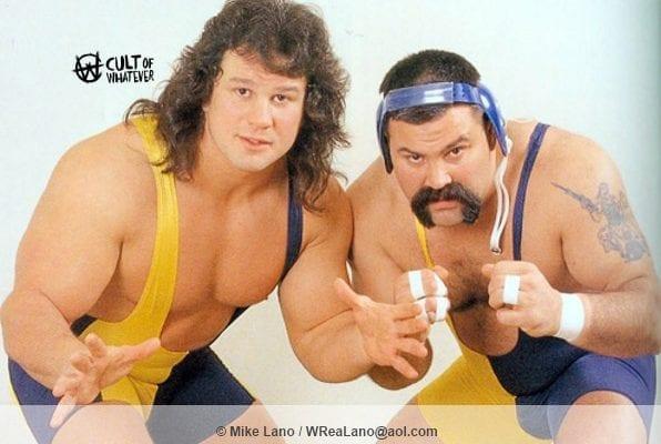 WWF Steiner Brothers