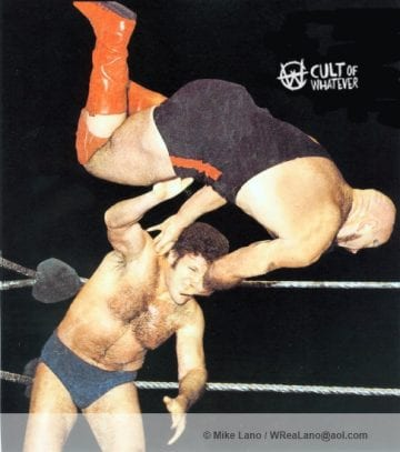 Bruno Sammartino and Ivan Koloff