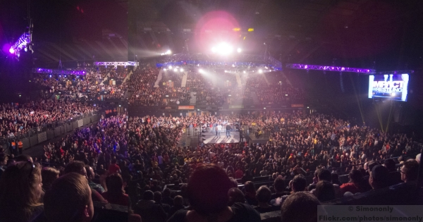 Wrestling Crowd