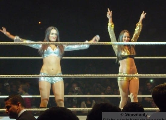 Wwe Divas The Bellas So1