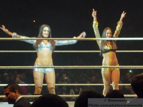 Wwe Divas The Bellas So1