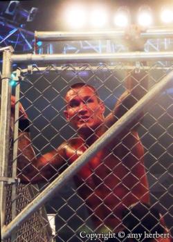 Wwe Randy Orton 2