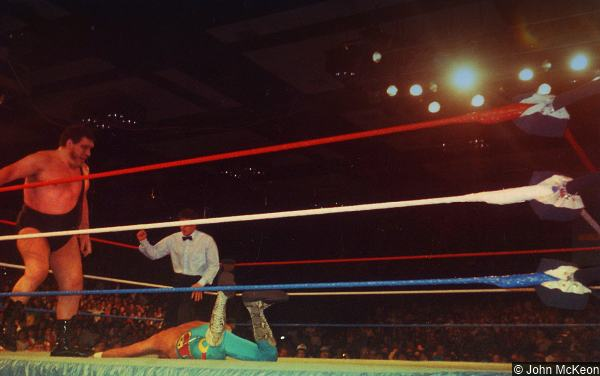 WWF Andre the Giant Jake Roberts