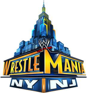 Big Wwe Wrestlemania 29
