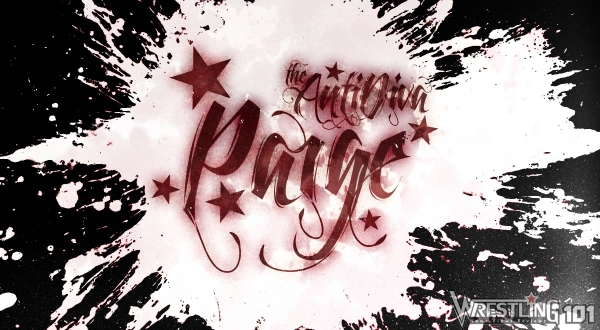 Wwe Paige Banner