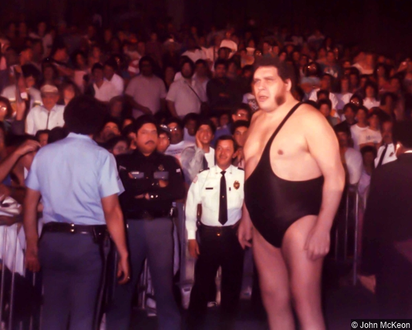 Wwf Andre The Giant