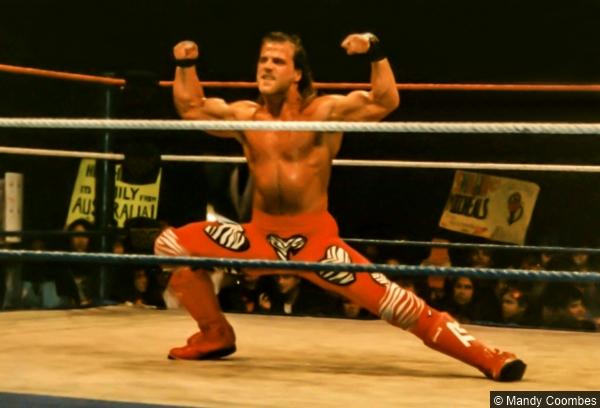 Wwf Shawn Michaels Hbk