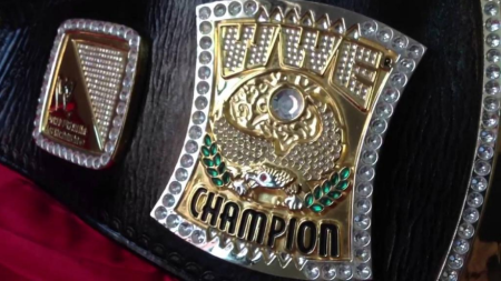 Sheamus's WWE Spinner Title Belt Side Plate