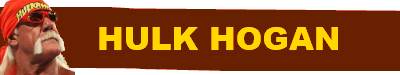 Wwe Wrestlemania Hulk Hogan Quote