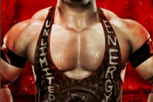 wwe-battleground-2013-poster