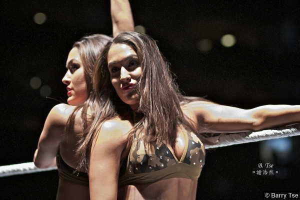 Wwe 2011 Tour Bellas