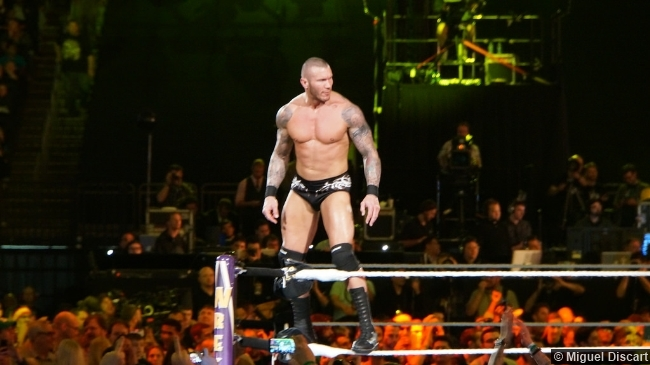 Wwe Wrestlemania 30 Randy Orton