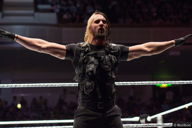 2013 Wwe Shield Seth Rollins