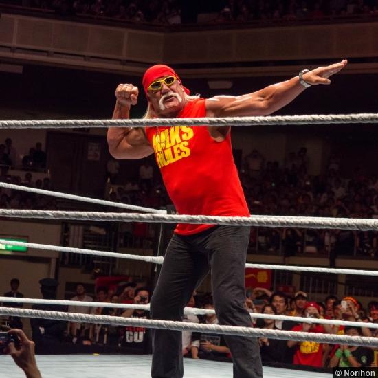 Wwe 072014 Hulk Hogan