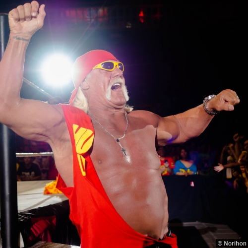 Wwe 110714 Hulk Hogan 3