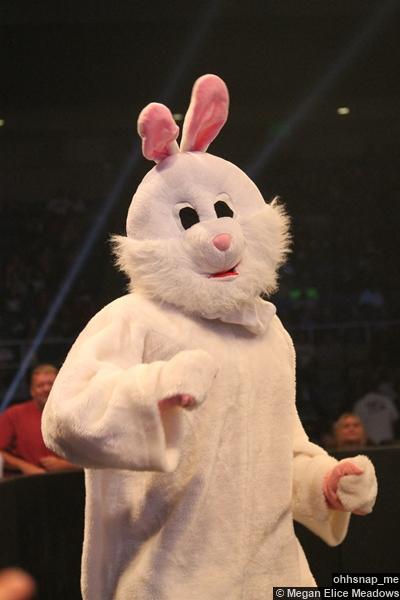 bunny-adam-rose-16092014