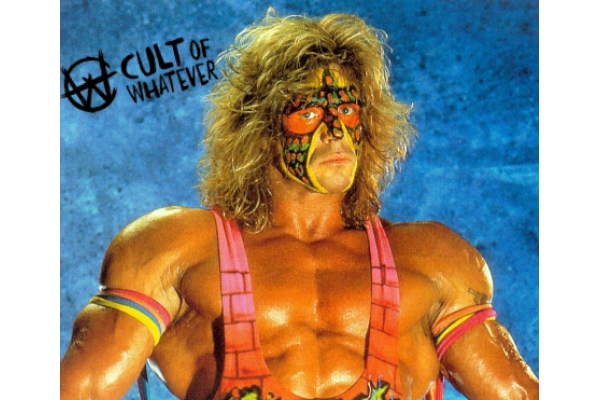 Wcw Ultimate Warrior 2