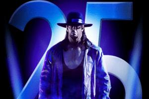 Wwe Survivor Series 2015 Poster
