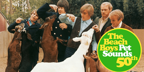Beach Boys Petsounds