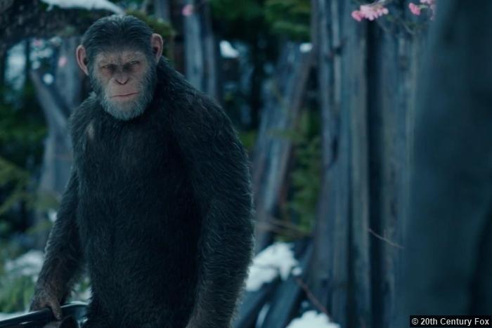 War Planet Apes 3 Cesar