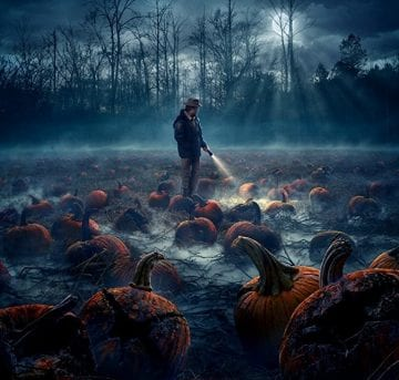 Stranger Things S2 Poster 2a