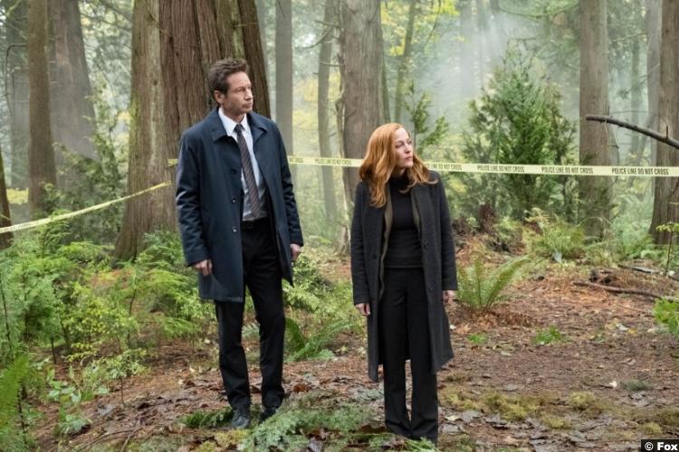 X Files S11e06 Gillian Anderson Dana Scully David Duchovny Fox Mulder
