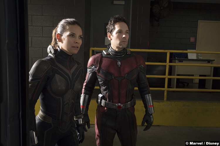 Ant Man Wasp Paul Rudd Evangeline Lilly