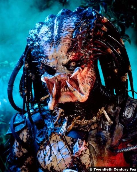 Predator 1987 1