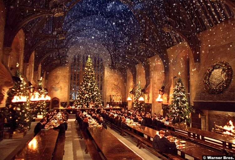 Harry Potter Chamber Secrets Christmas