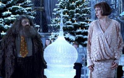Harry Potter Goblet Fire Robbie Coltrane Frances De La Tour Hagrid Madame Olympe Maxime