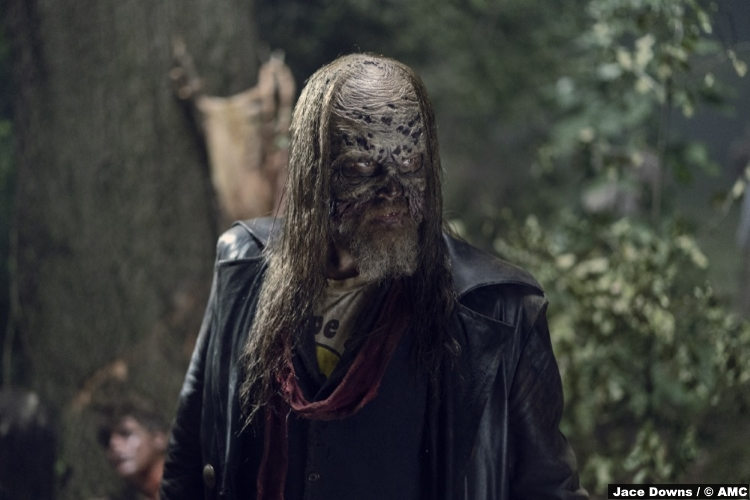 Walking Dead S09e13 Ryan Hurst Beta