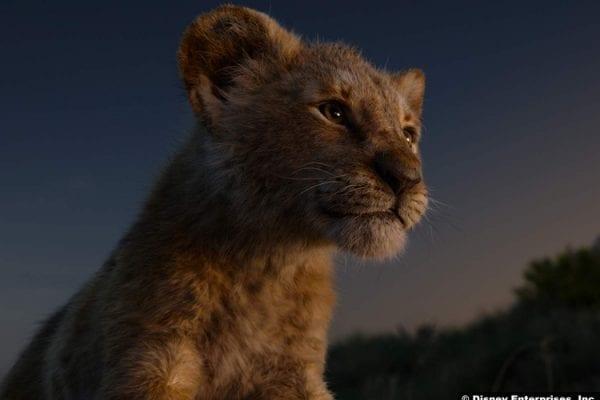 Lion King 2019 1