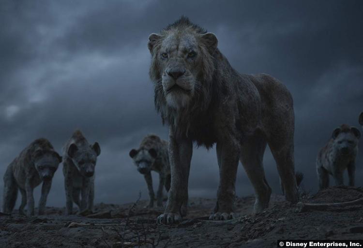 Lion King 2019 4