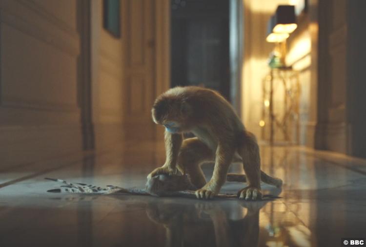 His Dark Materials S01e03 Golden Monkey 3